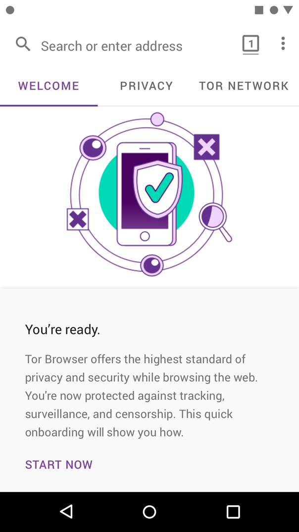 get the tor browser gydra